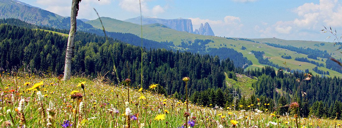 Sommer  und Wanderurlaub in den Dolomiten