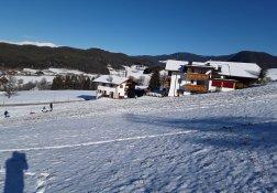winter-goldrainer-04