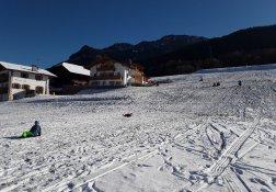 winter-goldrainer-05